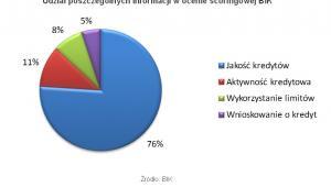 Udział poszczególnych informacji w ocenie scoringowej BIK