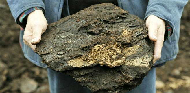 Węgiel brunatny