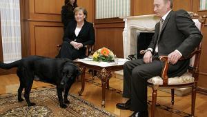 Spotkanie prezydenta Putina i kanclerz Angeli Merkel w 2007 r. Niemiecka kanclerz boi się psów. Źródło: Kremlin.ru