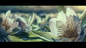 Zrzut ekranu z animacji Świteź Kamila Polaka. Źródło: www.human-ark.com