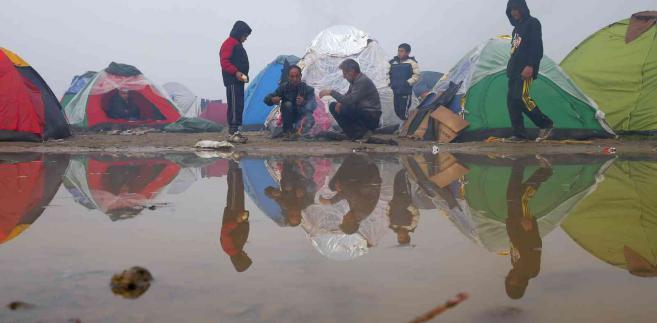 Imigranci na granicy grecko-macedońskiej EPA/VALDRIN XHEMAJ Dostawca: PAP/EPA.