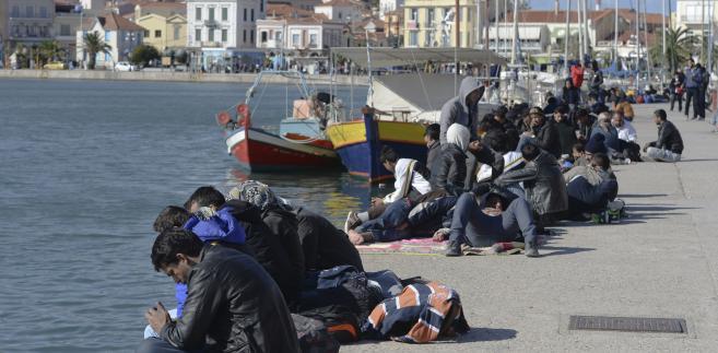 Imigranci na wyspie Lesbos