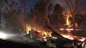Pożary w Kalifornii  EPA/ADAM L. WIEDMANN Dostawca: PAP/EPA.