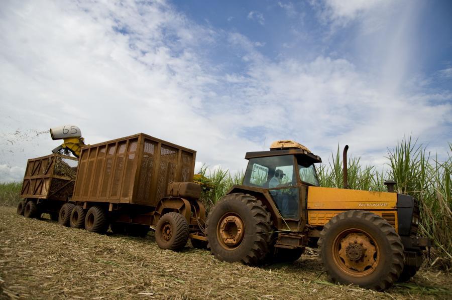 Etanol wytwarzany z kukurydzy to dzisiaj jedno z najpopularniejszych biopaliw w Stanach Zjednoczonych