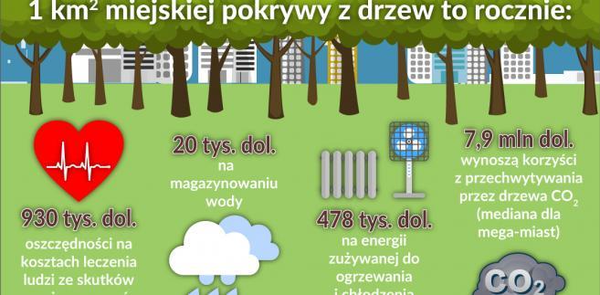 Drzewa_inwestycje-miejskie_oszczedności (graf. Obserwator Finansowy)