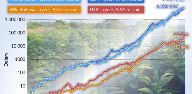 Tytoń - USA, Wlk-Brytania - zwrot z inwestycji (graf. Obserwator Finansowy)