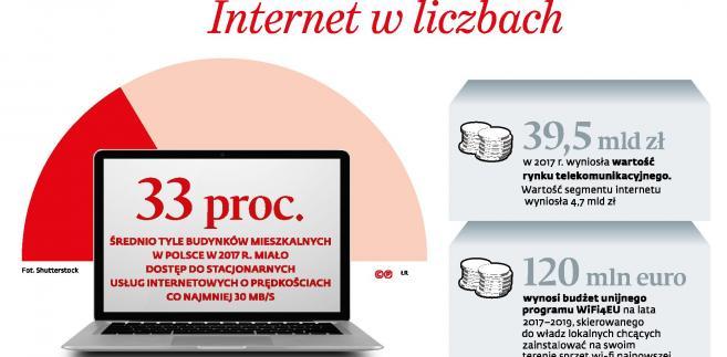 Internet w liczbach (p)